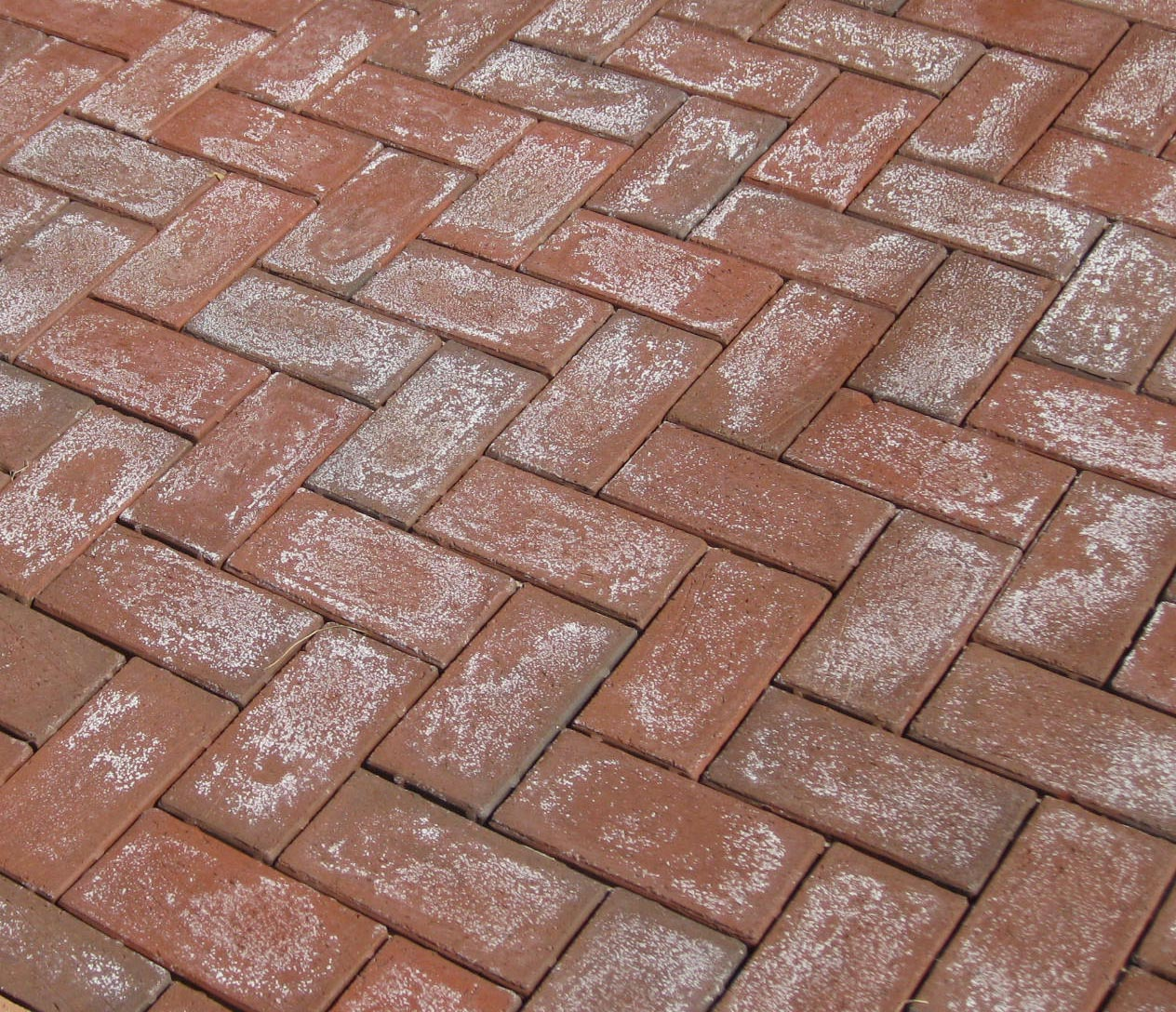 How to Stop Efflorescence recommend